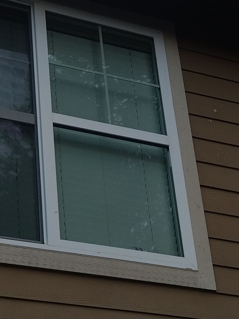 Commercial Glass Repair & Replacement Services Federal Way, WA